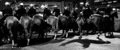Mounted Police at the ready to control crowds.